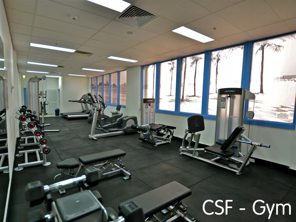 58b1ecdaf2__CSF photo of fitness facilities.jpg